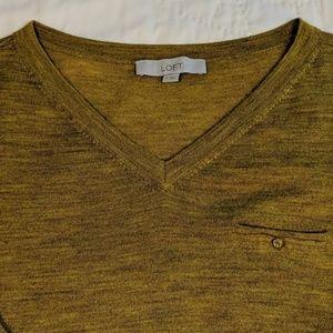 Ann Taylor Loft 3/4 sleeve v-neck sweater